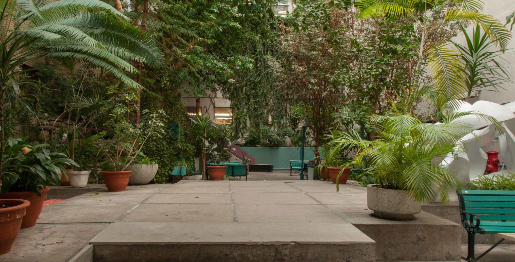 Jardin intérieur du Collège de Maisonneuve